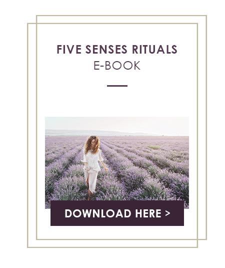 5Senses_Box
